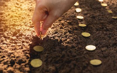 Pour investir dans les écoles d'agronomie de demain !