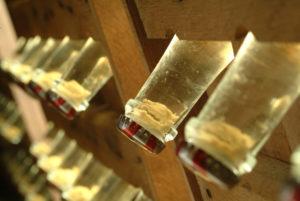 dépôt de levures en bouteille  - Source : Istock - Crédits : Arno Linke-Rohn