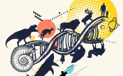 Le transfert horizontal de gènes